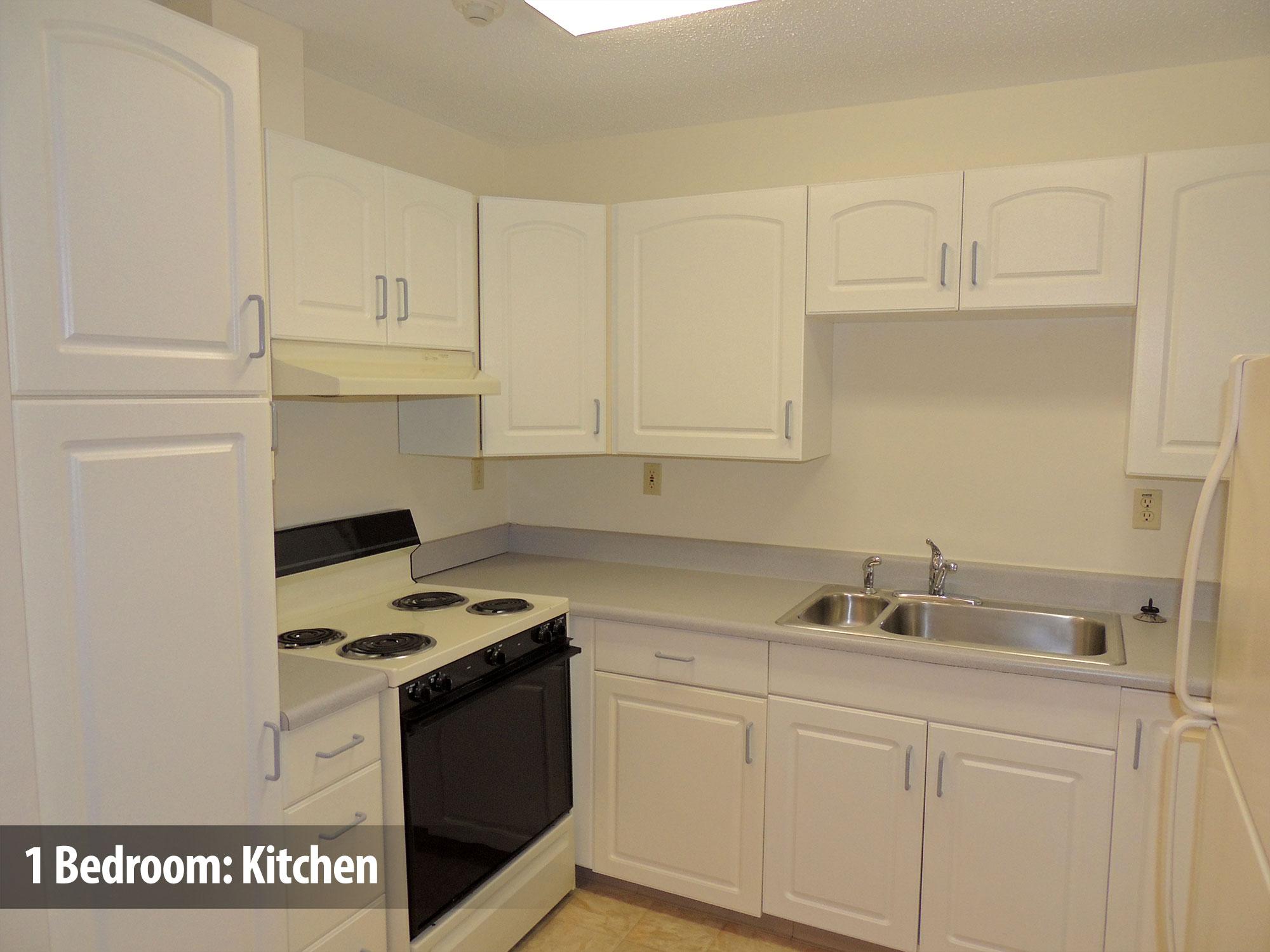 1bedroom-kitchen