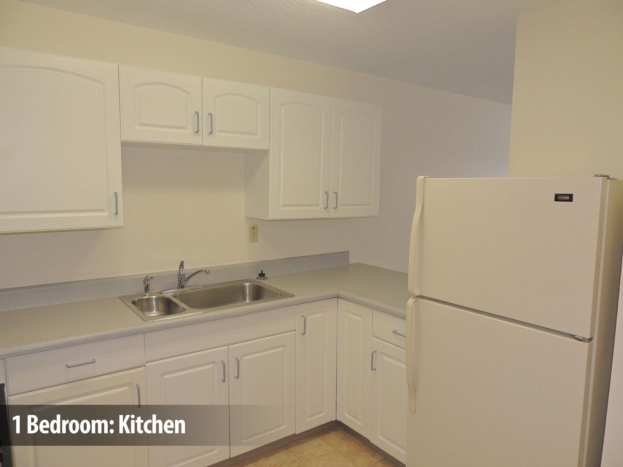 1bedroom-kitchen2