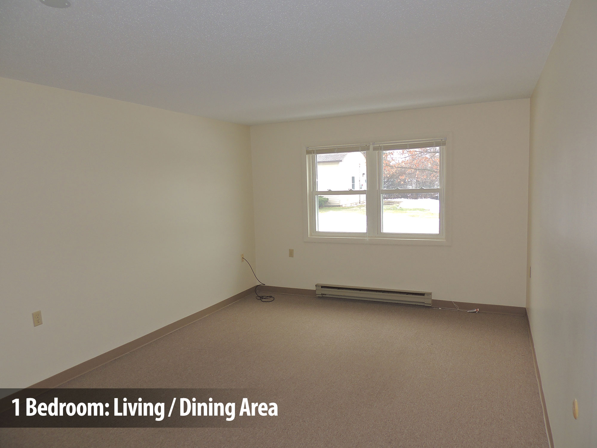 1bedroom-living-dining1