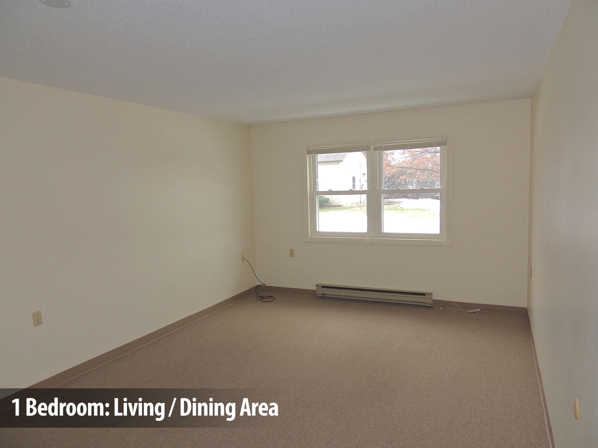 1bedroom-living-dining1