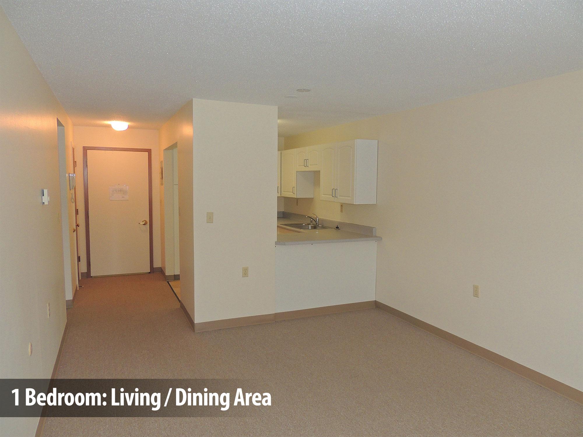 1bedroom-living-dining2
